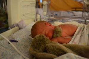 Baby Wouter van Dongen